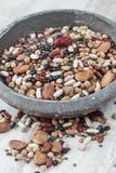 Blandade legumes Arkivbilder