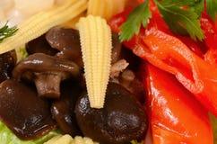 Blandade marinerade grönsaker och champinjoner Royaltyfri Fotografi