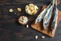 Blandade mellanmål för öl, torkad fisk Royaltyfria Bilder