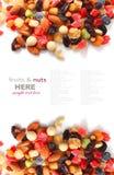 Blandade muttrar och torkar frukter Arkivfoto