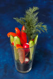 Blandade nya grönsaker i exponeringsglas - spansk peppar, gurka och dill Royaltyfria Foton