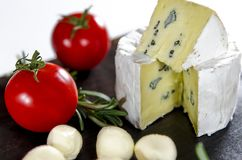 Blandade ostar på träbräde Camembert ost med blå mjöldagg, mozzarella med tomater royaltyfri foto