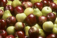 blandade pears för äpplebartlet Royaltyfri Bild