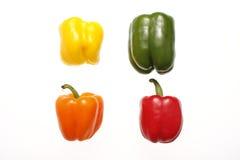 blandade peppar Arkivbilder