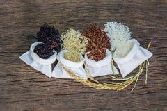 Blandade rå ris, jasminris, råriers, svarta jasminris och Riceberry fotografering för bildbyråer