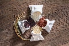 Blandade rå ris, jasminris, råriers, svarta jasminris och Riceberry arkivfoto