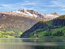 Blandade skogar och snöig alpina maxima över dalen av Wagital eller Waegital och bergsjön Wagitalersee Waegitalersee arkivbild