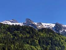 Blandade skogar och snöig alpina maxima över dalen av Wagital eller Waegital och den konstgjorda bergsjön Wagitalersee arkivbild