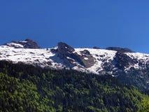 Blandade skogar och snöig alpina maxima över dalen av Wagital eller Waegital och den konstgjorda bergsjön Wagitalersee arkivfoton