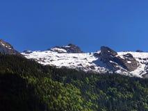Blandade skogar och snöig alpina maxima över dalen av Wagital eller Waegital och den konstgjorda bergsjön Wagitalersee royaltyfri fotografi