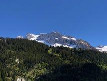 Blandade skogar och snöig alpina maxima över dalen av Wagital eller Waegital och den konstgjorda bergsjön Wagitalersee royaltyfria foton