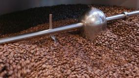 Blandande bönor av kaffe efter stek arkivfilmer