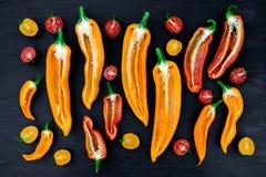 Blandat av halv röd och gul peppar med en grön filial nära den körsbärsröda tomaten på svart backround Top beskådar Fotografering för Bildbyråer