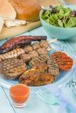 Blandat Barbequed kött Arkivfoton