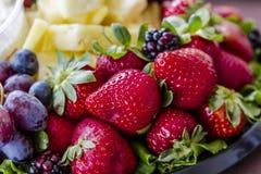 Blandat frukt- och ostmagasin royaltyfria bilder