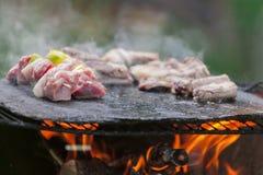 Blandat kött som lagas mat på stenen Royaltyfria Foton