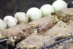 Blandat läckert kött med grönsaker arkivfoton