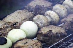 Blandat läckert kött med grönsaker royaltyfri foto