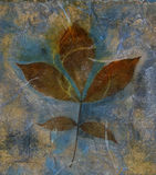 blandat leafmedel Arkivbilder