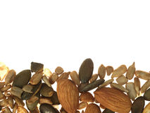 blandat nuts frö Arkivfoto