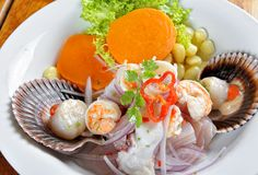 Blandning av ceviche för peruan för havsmat och fisk fotografering för bildbyråer
