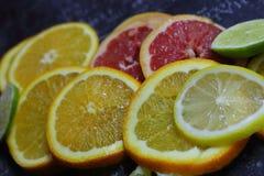 Blandning av den skivade bästa sikten för färgrika citrusfrukter Apelsin-, citron-, grapefrukt- och limefrukthalvaskivor på den s Arkivfoto
