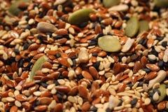 Blandning av grönt frö för solrosfrö och svart- och bruntsesamsom sund vegetarisk matbakgrund Arkivbilder