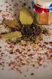 Blandning av kryddor royaltyfria bilder