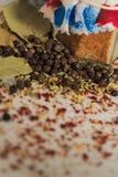 Blandning av kryddor arkivbild