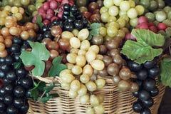 Blandning av olika druvor royaltyfria foton
