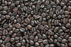 Blandning av olika sorter av kaffebönor Royaltyfria Bilder