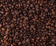 Blandning av olika sorter av kaffebönor klart bruk för bakgrundskaffe Arkivbilder