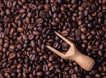Blandning av olika sorter av kaffebönor klart bruk för bakgrundskaffe Fotografering för Bildbyråer