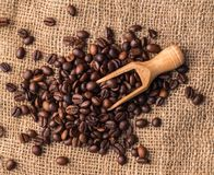 Blandning av olika sorter av kaffebönor med sleven Kaffelodisar Arkivbilder