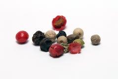 Blandning av peppar Arkivbild