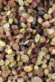 Blandning av russin av olika skuggor i marknaden arkivfoto
