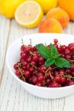 Blandning av sommarfrukt Royaltyfria Bilder