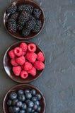 Blandning av vinbär och blåbär för bärhallon röda i en sma Royaltyfria Foton
