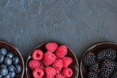 Blandning av vinbär och blåbär för bärhallon röda i en sma Fotografering för Bildbyråer