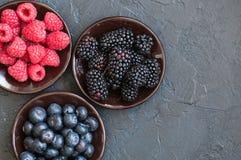 Blandning av vinbär och blåbär för bärhallon röda i en sma Arkivbild