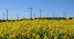 Blandning för alternativ energi, kuggefokus stock video