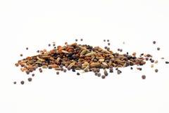 Blandning för krydda för Panch Phoron indier fem royaltyfri bild