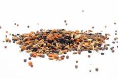 Blandning för krydda för Panch Phoron indier fem arkivfoton