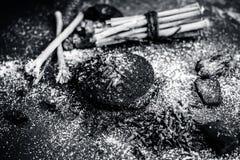 Blandningen eller ingredienser av den traditionella tandkr?men gjorde i Asien I E Br?nna till kol pulver, pulver av neembusken, k fotografering för bildbyråer