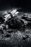 Blandningen eller ingredienser av den traditionella tandkr?men gjorde i Asien I E Br?nna till kol pulver, pulver av neembusken oc royaltyfri fotografi
