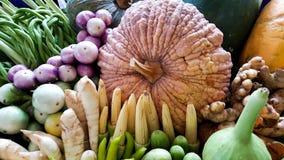 Blandninggrönsaker Arkivbild