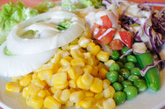 Blandninggrönsaksallad, sund mat Royaltyfri Bild