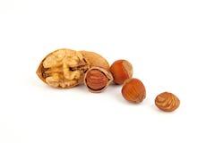 Blandningmuttrar (hasselnötter, valnötter). fotografering för bildbyråer