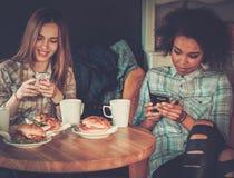 Blandras- flickor i ett kafé Arkivfoton