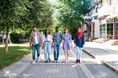 Blandras- grupp av vänner som går i gatan royaltyfri bild
